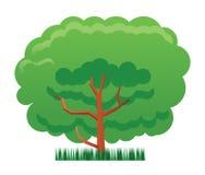 Träd- och gräsillustration Arkivbild
