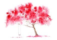 Träd och gunga för blomning körsbärsrött Royaltyfri Foto