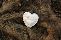 Träd och hjärta Royaltyfria Foton