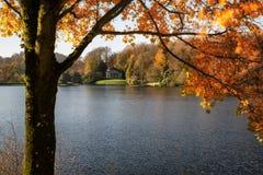 Träd och huvudsaklig sjö i Stourhead trädgårdar under höst Royaltyfri Fotografi
