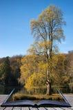 Träd och huvudsaklig sjö i Stourhead trädgårdar under höstconceptua Royaltyfri Bild