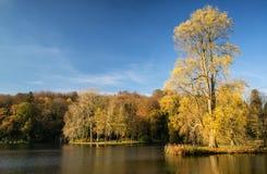Träd och huvudsaklig sjö i trädgårdar under höst Royaltyfri Foto