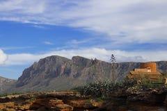 Träd och kaktuns bredvid en byggnad på vaggar med kullar och härlig blå himmel, sant pere för coloniade, mallorca, Spanien royaltyfria bilder
