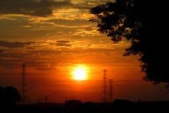 Träd och kraftledningtornkonturer på orange ljus för solnedgång Royaltyfri Bild