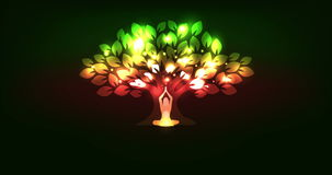 Träd och kvinna
