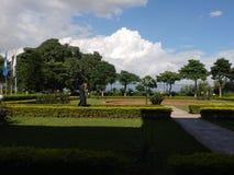 Träd och molnkontrast Royaltyfri Foto