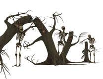 Träd och skelett är läskiga Arkivfoto