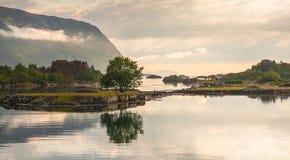 Träd och smal rött hus vid shorelinen Fotografering för Bildbyråer