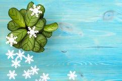 Träd och snöflingor för grön växt för arrowrot stock illustrationer