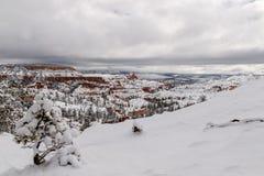 Träd och snöig landskap, Bryce Canyon, Utah Arkivfoto
