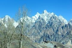 Träd och spektakulärt berglandskap i baksidan arkivbild