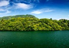 Träd och vegetation över sjön Ashi i Hakone, Japan arkivbilder