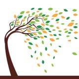 Träd och vind Royaltyfri Foto