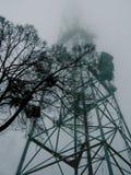 Träd på bakgrunden av ett torn för hög metall i dimman royaltyfri bild