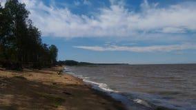 träd på den strandclounden och himlen Royaltyfria Foton