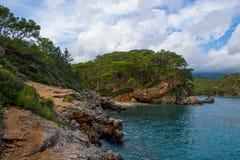 Träd på det steniga havet seglar utmed kusten på den stormiga molniga dagen Royaltyfria Bilder