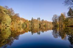 Träd på en glas- sjö royaltyfri fotografi