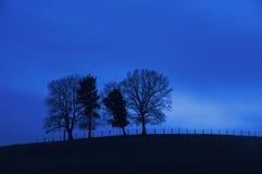 Träd på en kulle på natten Royaltyfri Foto
