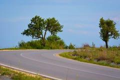 Träd på en vänd Royaltyfri Fotografi
