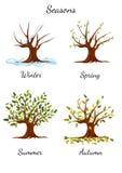 Träd på fyra säsonger - illustration vektor illustrationer