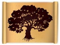 Träd på gammalt snirkelpapper. Vektor royaltyfri illustrationer