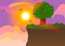 Träd på klippan på solnedgången Royaltyfri Bild