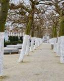 Träd på montering för Kunstberg eller Mont des-konster av konsterna i Brussel, Belgien Arkivfoton