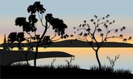 Träd på solnedgånglandskap Royaltyfri Bild