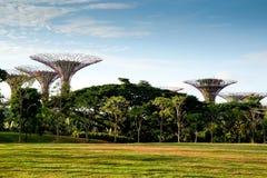 Träd på trädgårdar vid fjärden Royaltyfria Bilder