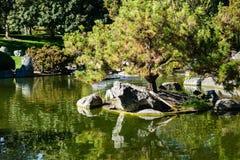 Träd reflekterade i en man som gjordes dammet, den japanska kamratskapträdgården, San Jose, Kalifornien royaltyfria foton