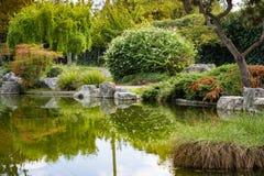 Träd reflekterade i en man som gjordes dammet, den japanska kamratskapträdgården, San Jose, Kalifornien arkivfoton