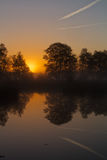 Träd reflekterade i vatten på soluppgång arkivbild