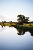 Träd reflekterat i den Shropshire unionkanalen Arkivbild