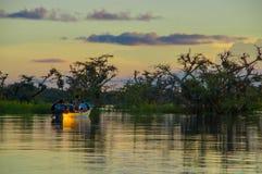 Träd silhouetted mot en orange himmel på solnedgången över Laguna som är stor i nationalparken för Cuyabeno djurlivreserv, in royaltyfri foto