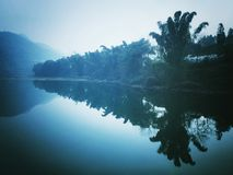 Träd skuggar i vattnet blir ett TRÄD Arkivfoto