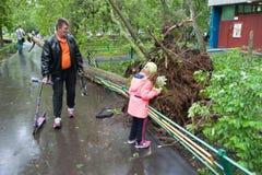 Träd som är brutet vid en orkan, en man och en flicka i Moskva Royaltyfria Foton