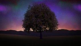 Träd som blåser på natten Sömlös ögla 4K
