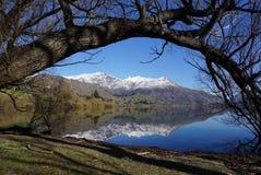 Träd som inramar sjön och berg Royaltyfria Foton