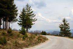 Träd som omger en slingrig bergvägvänd nedanför episk himmel med moln arkivfoto