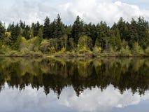 Träd som reflekterar i den borttappade lagun på stanley, parkerar i vancouver Arkivbild