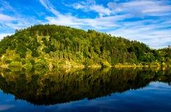 Träd som reflekterar på en flod Arkivfoton