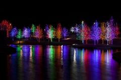 Träd som slås in i LEDDE ljus för jul Arkivbild