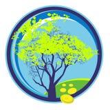 Träd som täckas med barnvårlövverk Arkivbilder