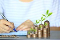 Träd som växer på mynt pengar och kvinnahanden en penna på bankkontobankbok, affärsinvestering och räddningpengar för, förbereder fotografering för bildbyråer