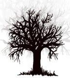 Träd Svart silouette Arkivbild