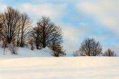 Träd utan sidor i snöframdelen Sikt av vinterberg Arkivbilder
