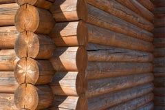 Träd vägg, runda, trä, hus, skog arkivbild
