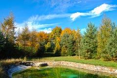 Träd vid dammet, Tjeckien, höst arkivbilder