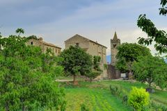Träd, vindruvor och en kyrka i mummel, Kroatien Royaltyfri Bild
