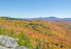 Träd visar deras riktiga färger över ett bergigt landskap Royaltyfri Fotografi